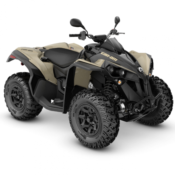 222 Can-am Renegade 650 DPS T 2021