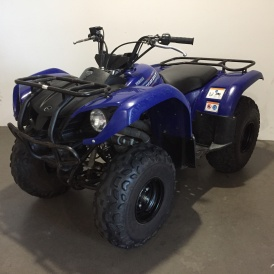 222 Yamaha Grizzly 125