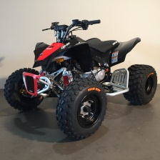 222 Can-am DS 90 X