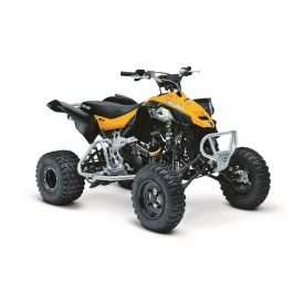222 Can-am DS 450 X mx